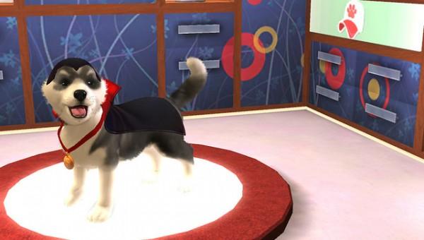 PS Vita Pets 5